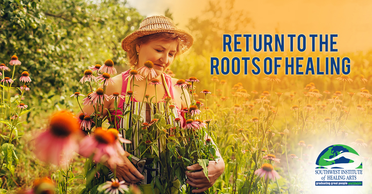 Root-of-Healing-SWIHA-Blog