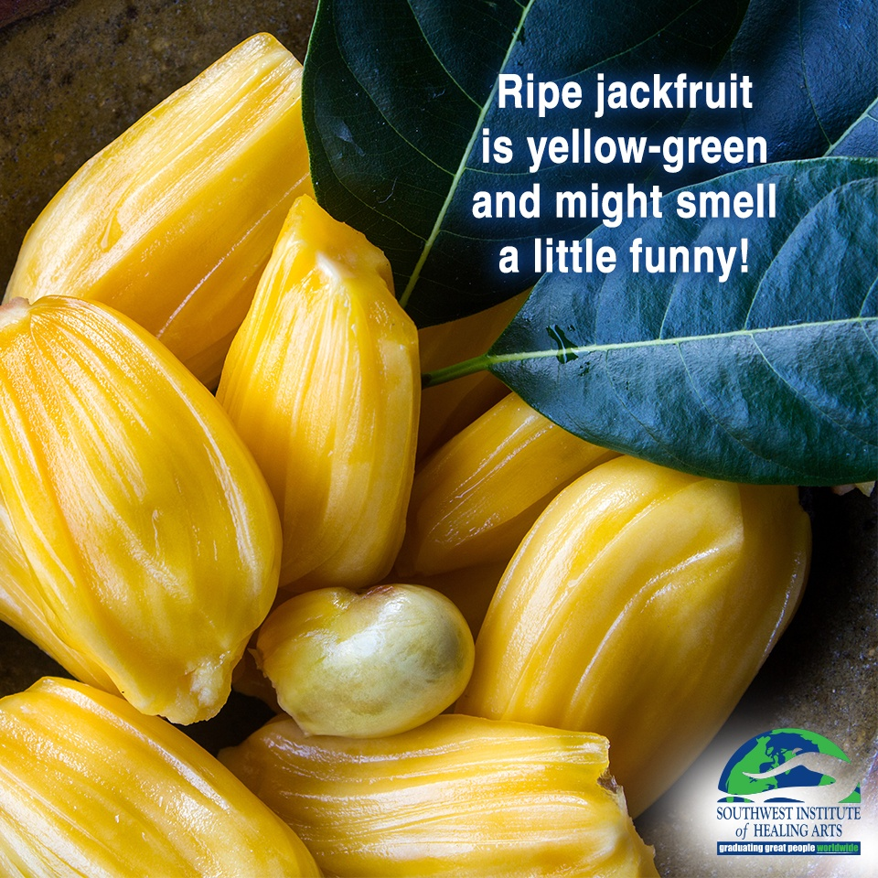 Jackfruit-2