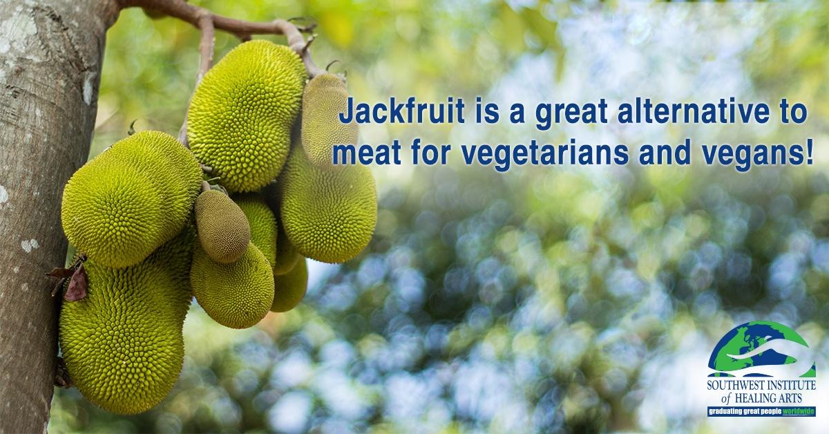Jackfruit-feat