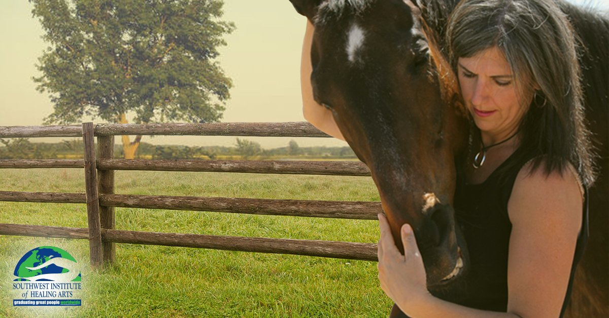 Reiki-for-Animals-Extends-Healing-SWIHA-Blog